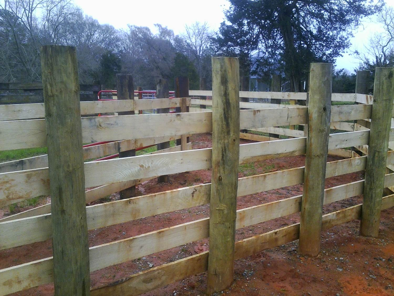 Cattle Wire Fence
