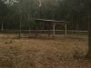 hay-feeding-shed
