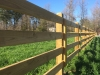 kentucky-longhorn-fence
