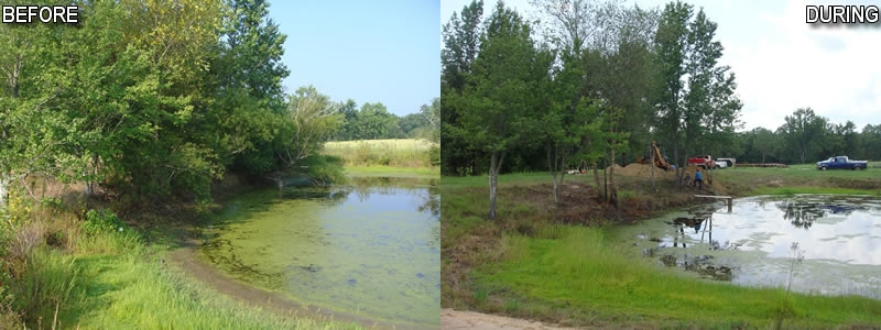 pond-clearing-blueherondam_0