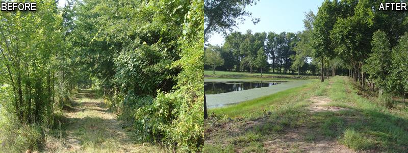 Pond maintenance for Pond maintenance companies