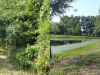 pond-clearing-perryspond3